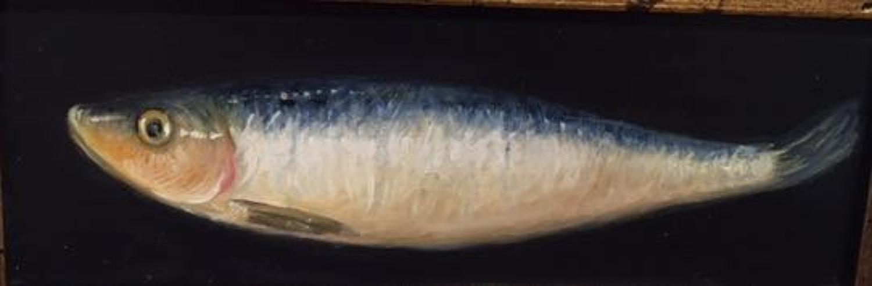 Sardine oil on board painting