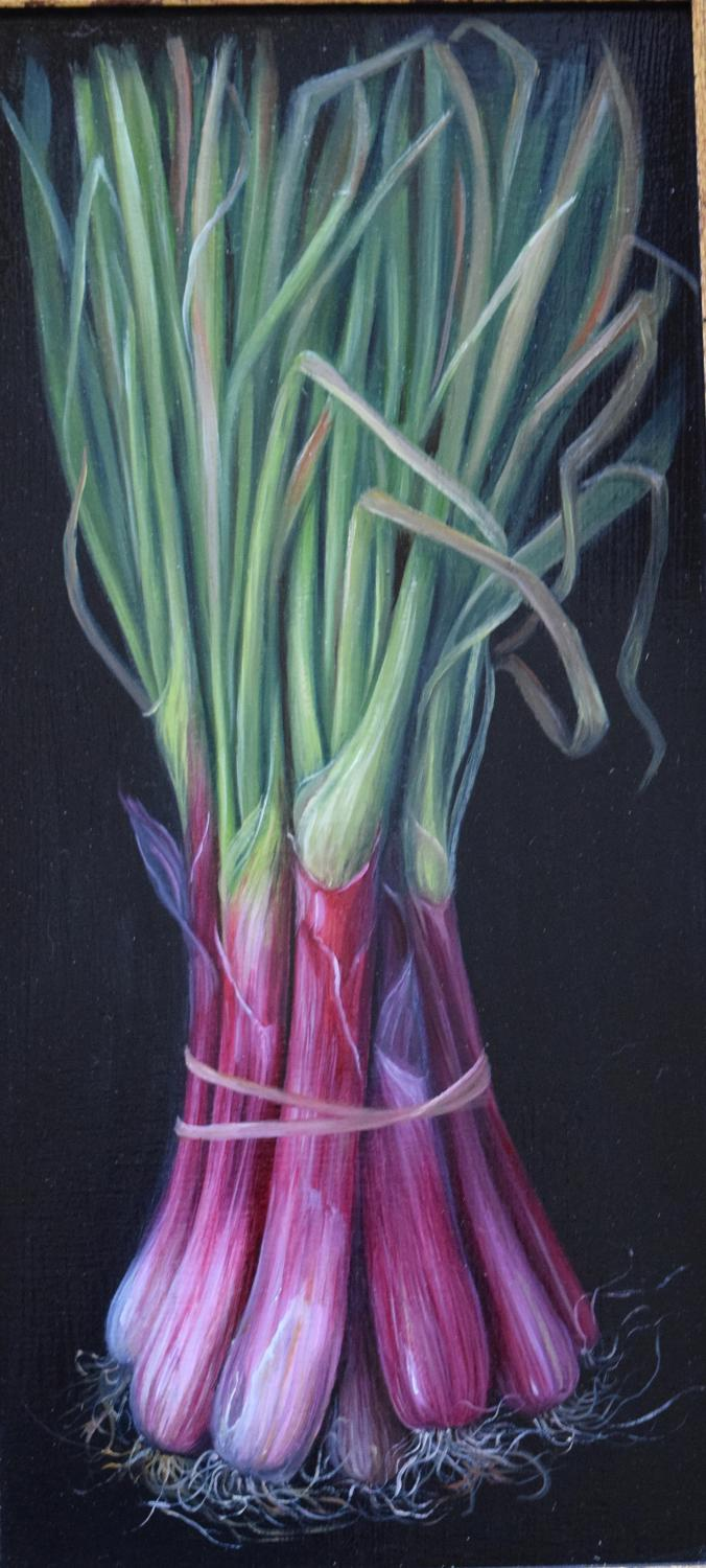 Bunch of pink spring onions