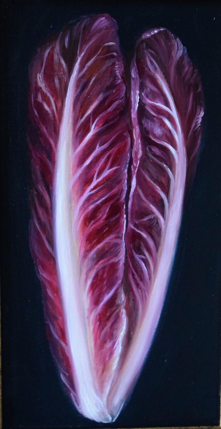 Italian red chicory