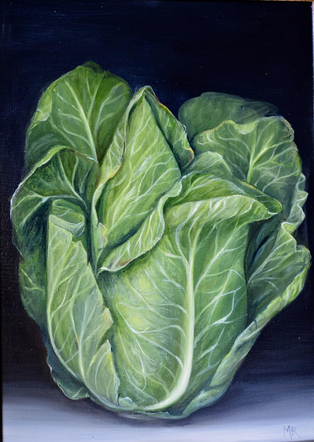 Pointy cabbage