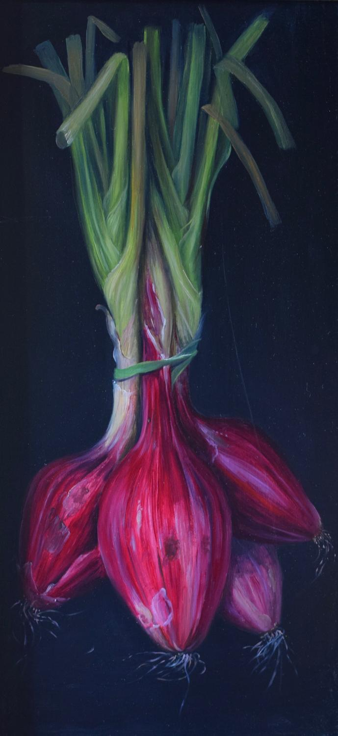 Hanging bunch of red onions
