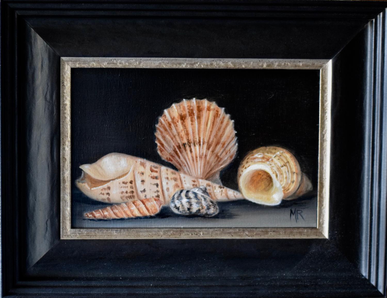 Shells (2)