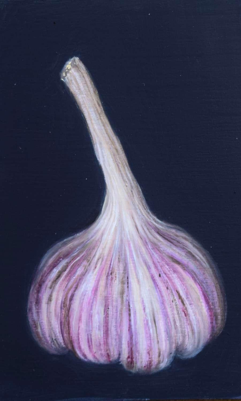 Large new French garlic