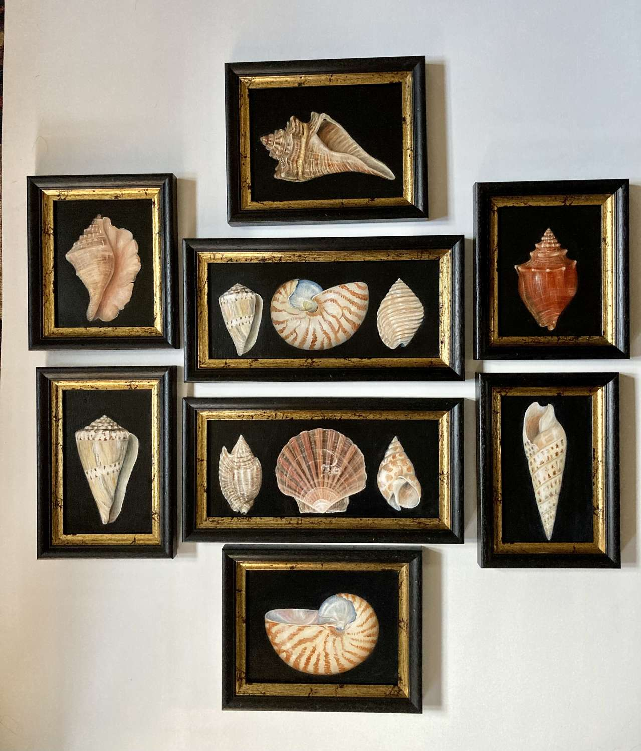 8 Shell paintings