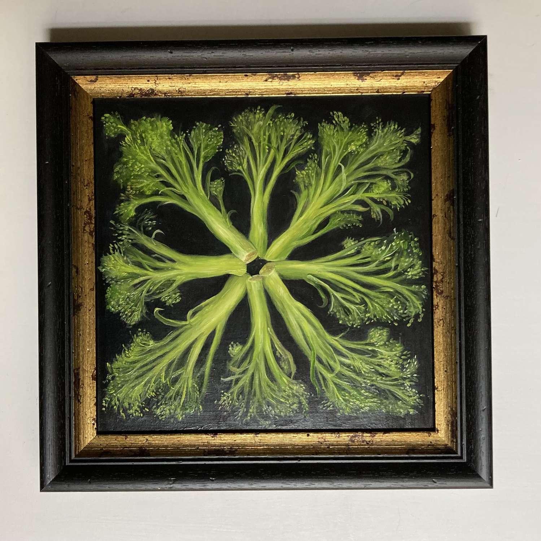 Circle of tender stem broccoli